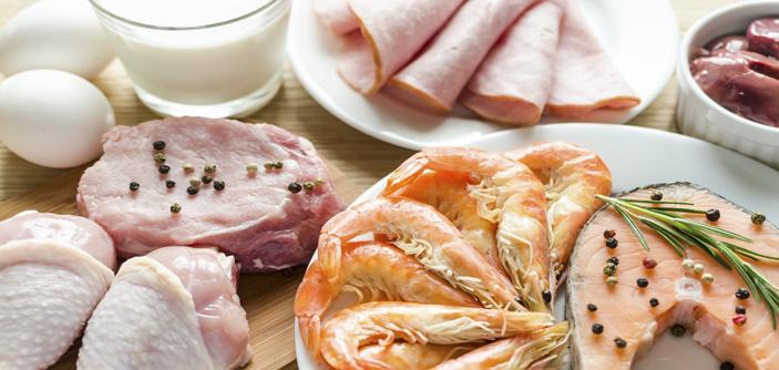 Como funciona a dieta da proteína?