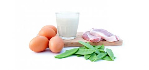 Time 4 5 motivos para você consumir mais proteínas