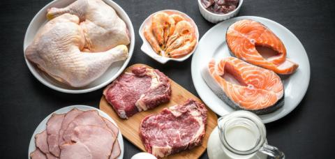 Time 4 Mitos e verdades sobre a dieta da proteína