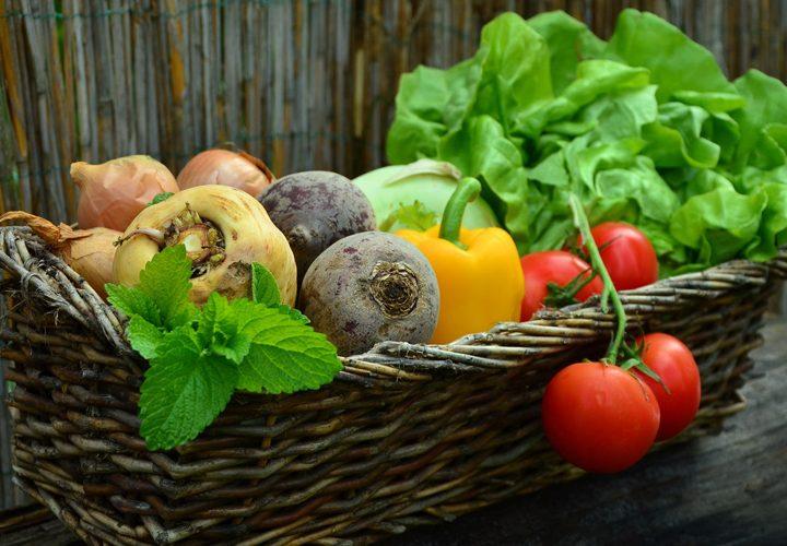 O que são os alimentos funcionais?