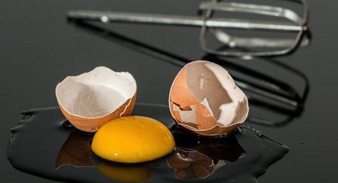 A relação entre o ovo e massa muscular